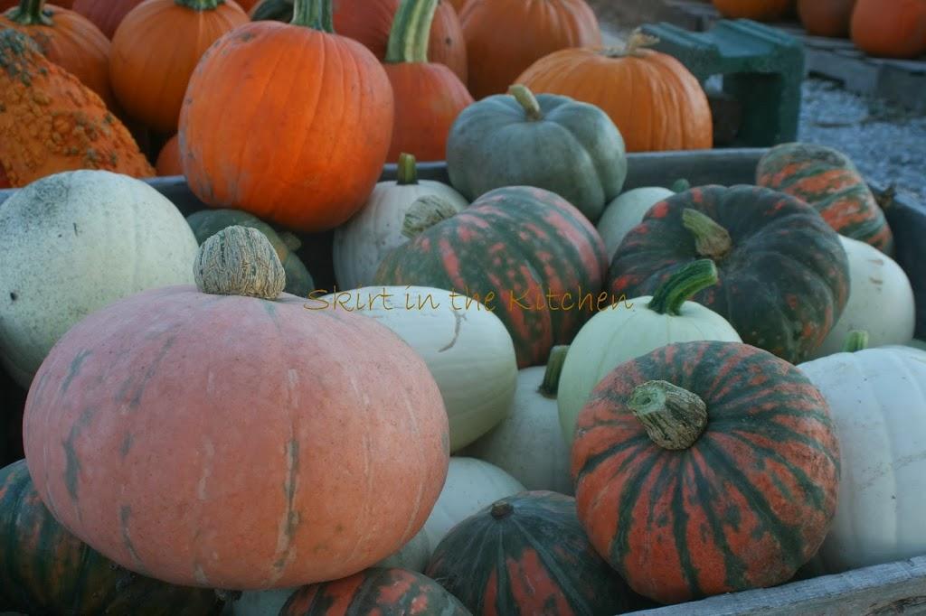 IMG_3496-pumpkins