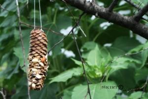 Bird Seed Tree