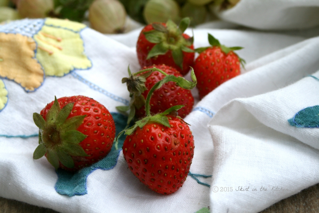 IMG_8115 Fruitful Summer
